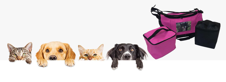 TBox Pet – Parasta lemmikillesi